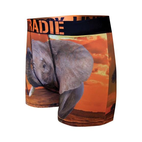 Tradie Men's Eddie Elephant Trunk, Print, bcf_hi-res