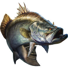 Savage Barramundi Sticker Large 2 Pack, , bcf_hi-res