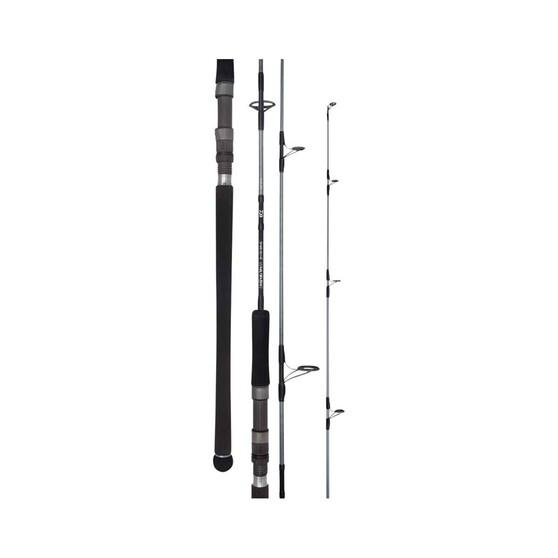 Daiwa 20 TD Saltwater Spinning Rod, , bcf_hi-res