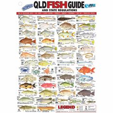 AFN Fish ID QLD Maps/Guides, , bcf_hi-res