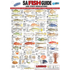 AFN Fish ID SA Books, , bcf_hi-res