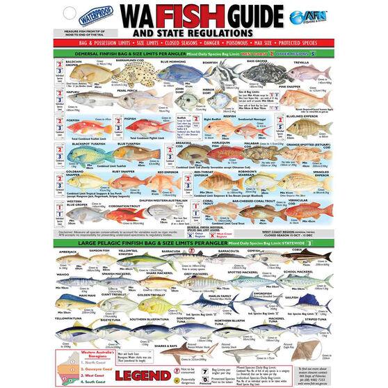 AFN Fish ID WA Maps/Guides, , bcf_hi-res