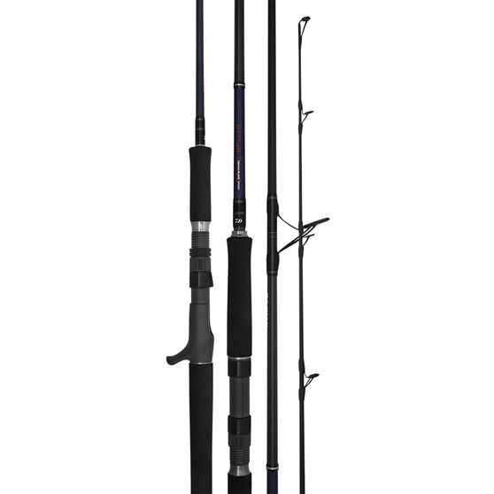 Daiwa Saltist Demon Blood V2 Spinning Rod 5ft 6in, , bcf_hi-res