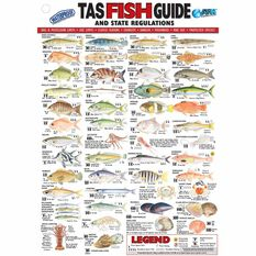 AFN Fish ID TAS Maps/Guides, , bcf_hi-res